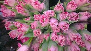 flower-bouquet-938049__180