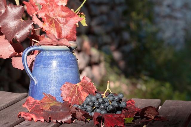 wine-1729459_960_720