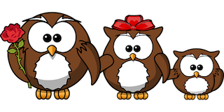owl-158418__340