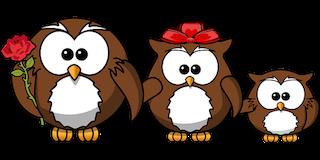 owl-158418__3401